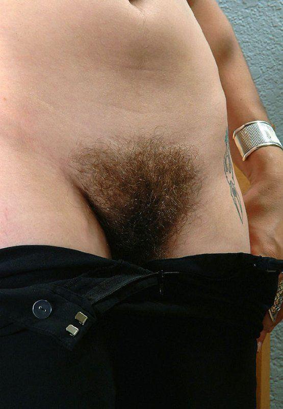 Chucha peluda