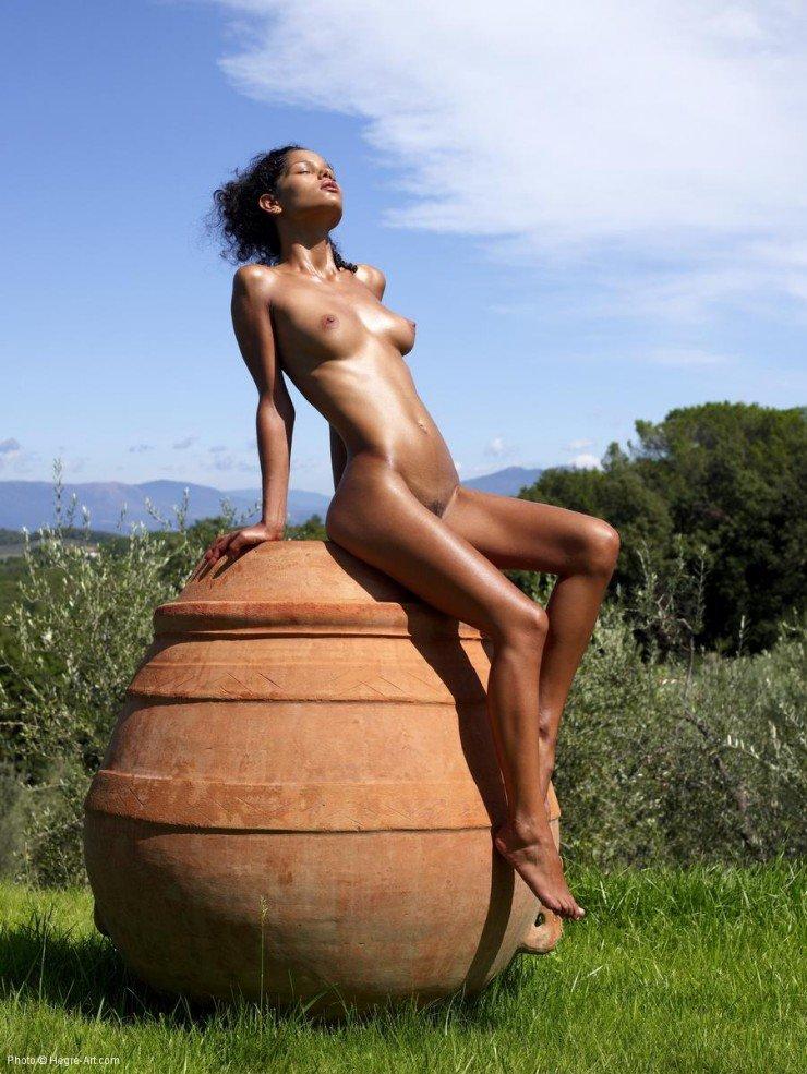 Negrita desnuda en el campo