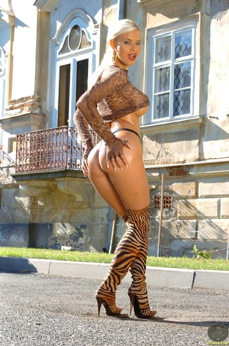 Kathy LEE ActionGIRLS Cheetah 17 Busty EURO Blonde 2006 BRTC