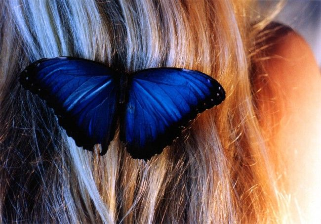 jovencita-rusa-mariposa_11